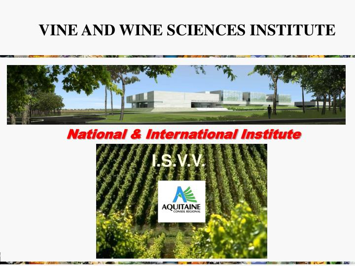 VINE AND WINE SCIENCES INSTITUTE