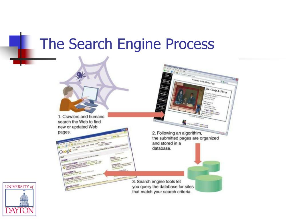 The Search Engine Process