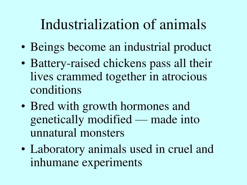 Industrialization of animals