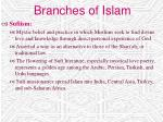 branches of islam16