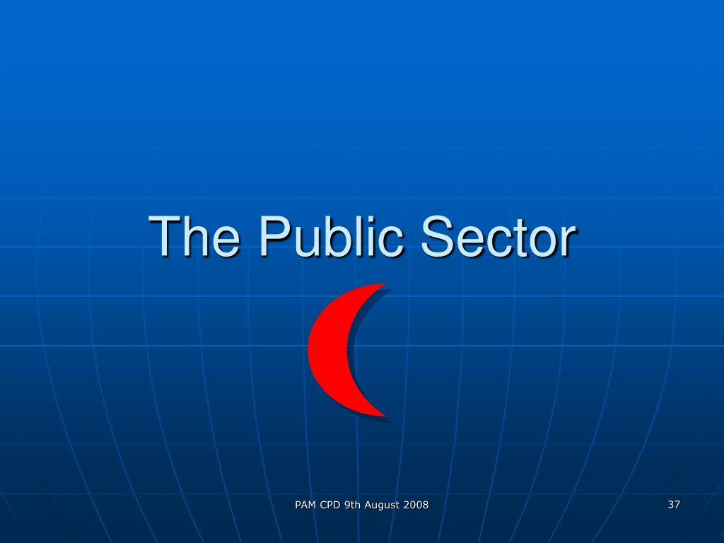 The Public Sector