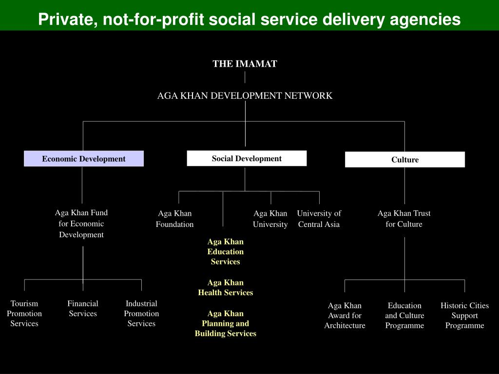 Private, not-for-profit social service delivery agencies