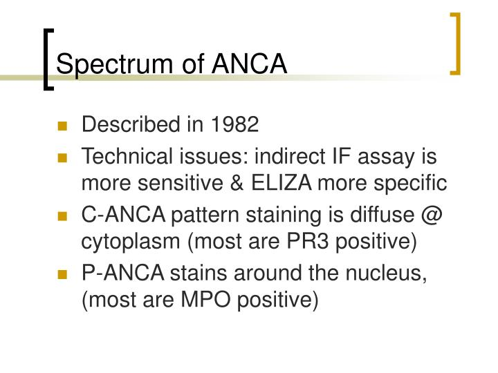 Spectrum of ANCA