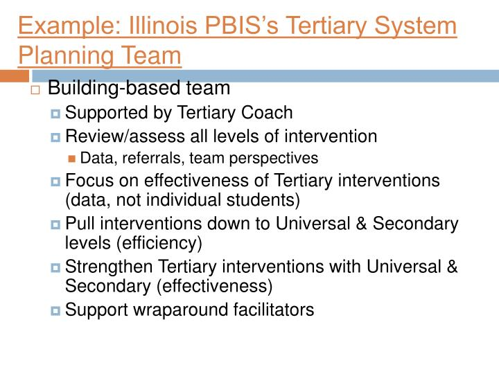 Example: Illinois PBIS's Tertiary System Planning Team
