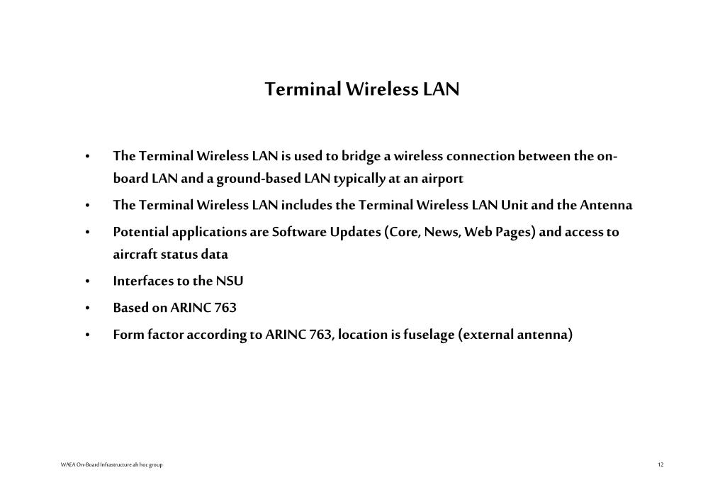 Terminal Wireless LAN