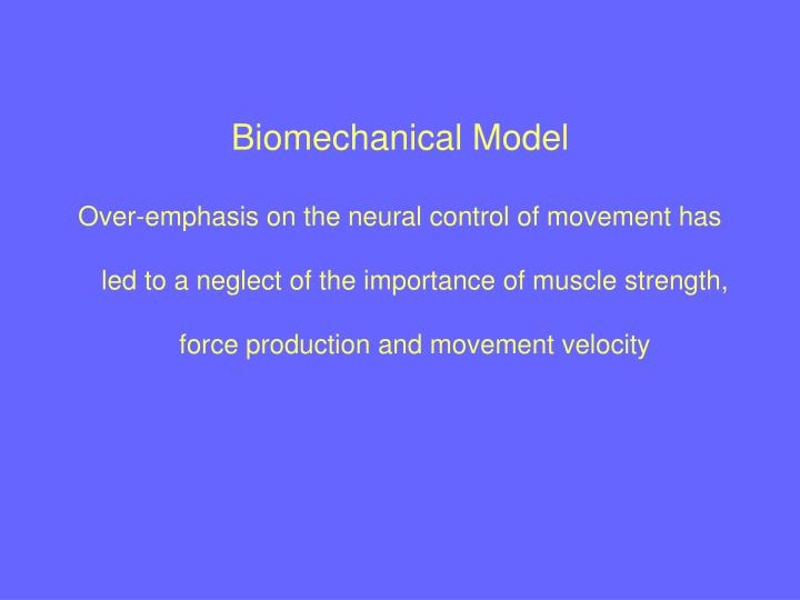 Biomechanical Model