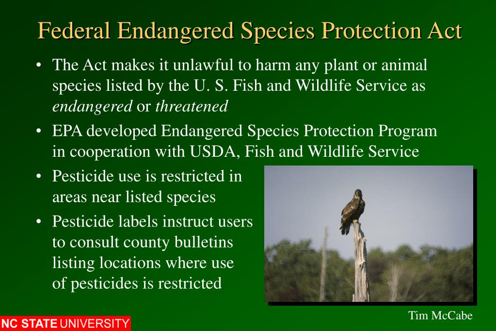 Federal Endangered Species Protection Act