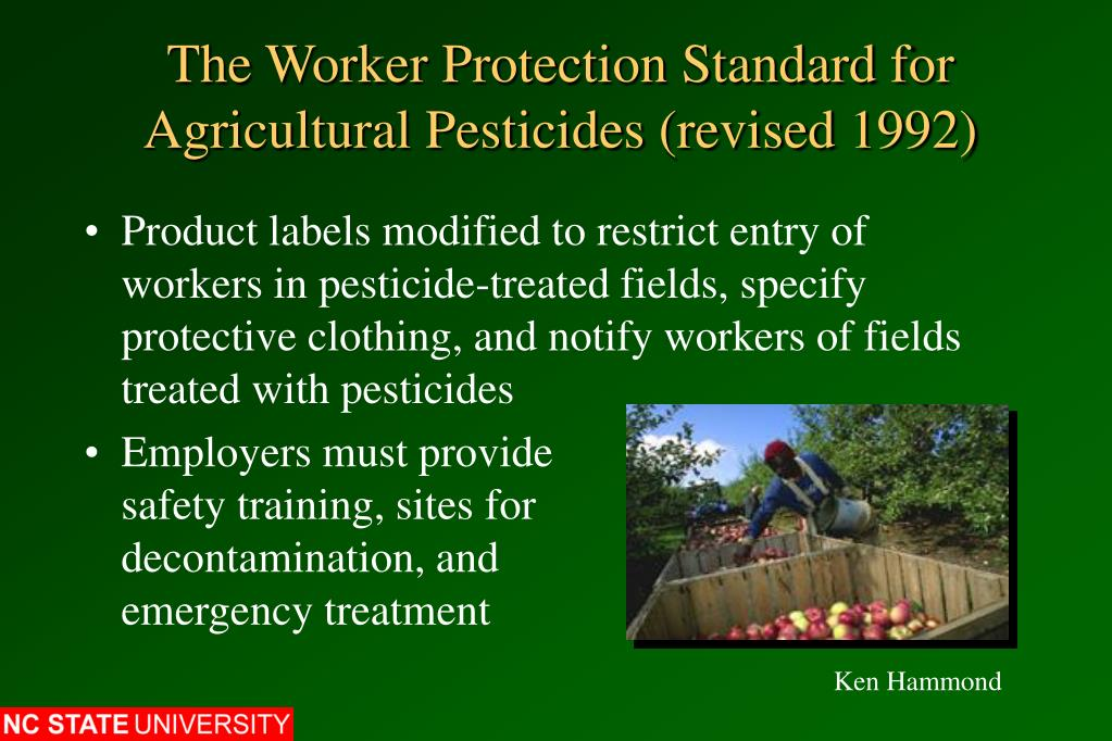 The Worker Protection Standard for