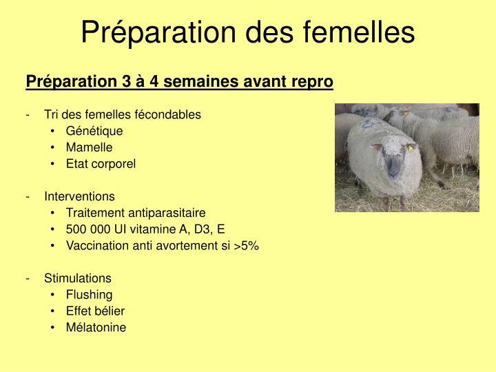 Préparation des femelles