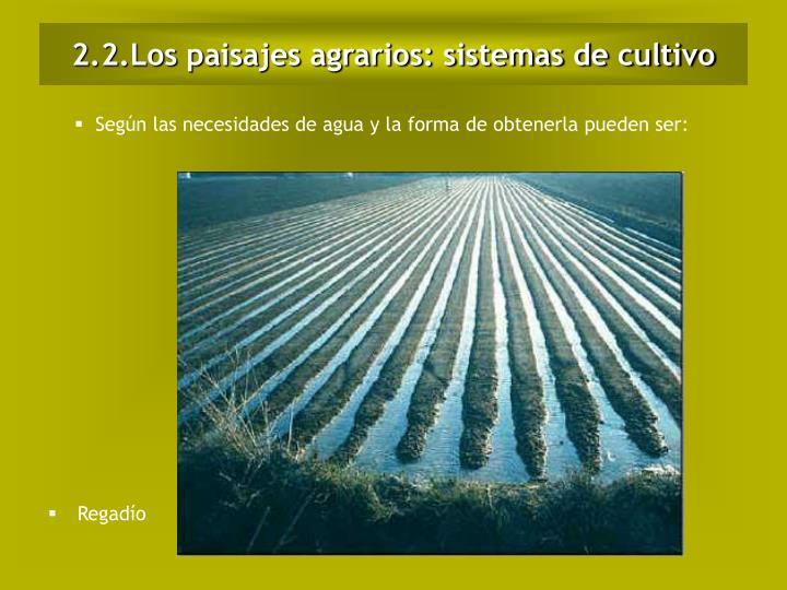 2.2.Los paisajes agrarios: sistemas de cultivo
