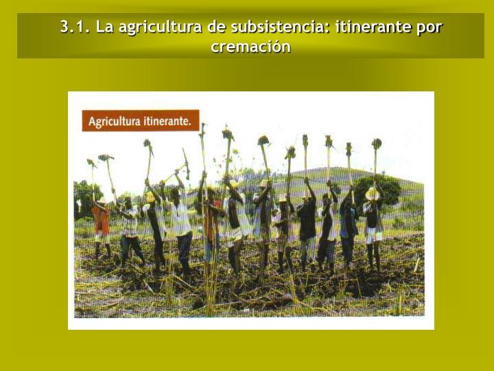3.1. La agricultura de subsistencia: itinerante por cremación