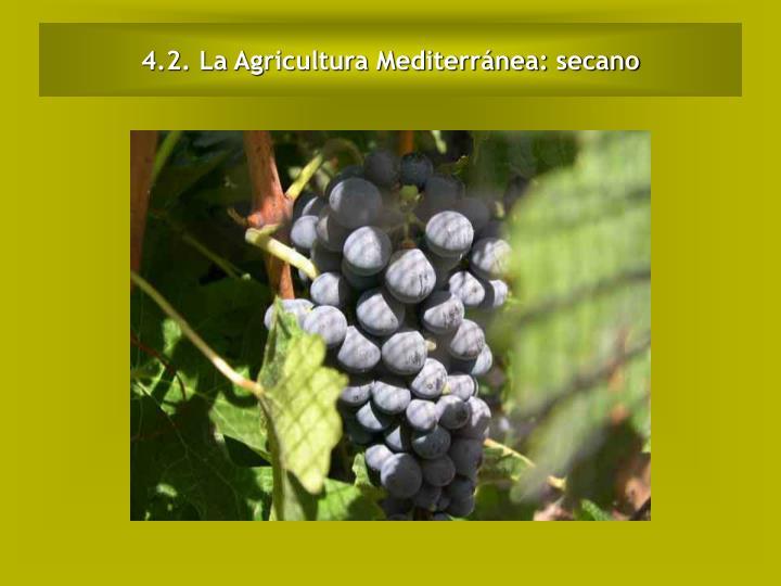 4.2. La Agricultura Mediterránea: secano