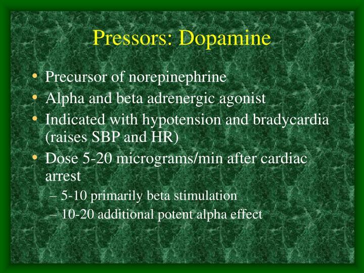 Pressors: Dopamine