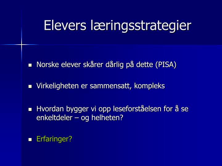 Elevers læringsstrategier
