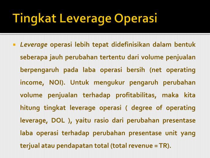 Tingkat Leverage