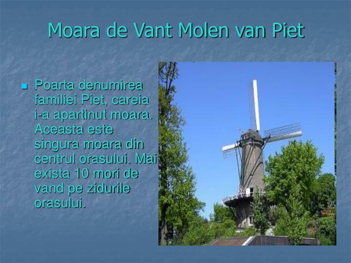 Moara de Vant Molen van Piet