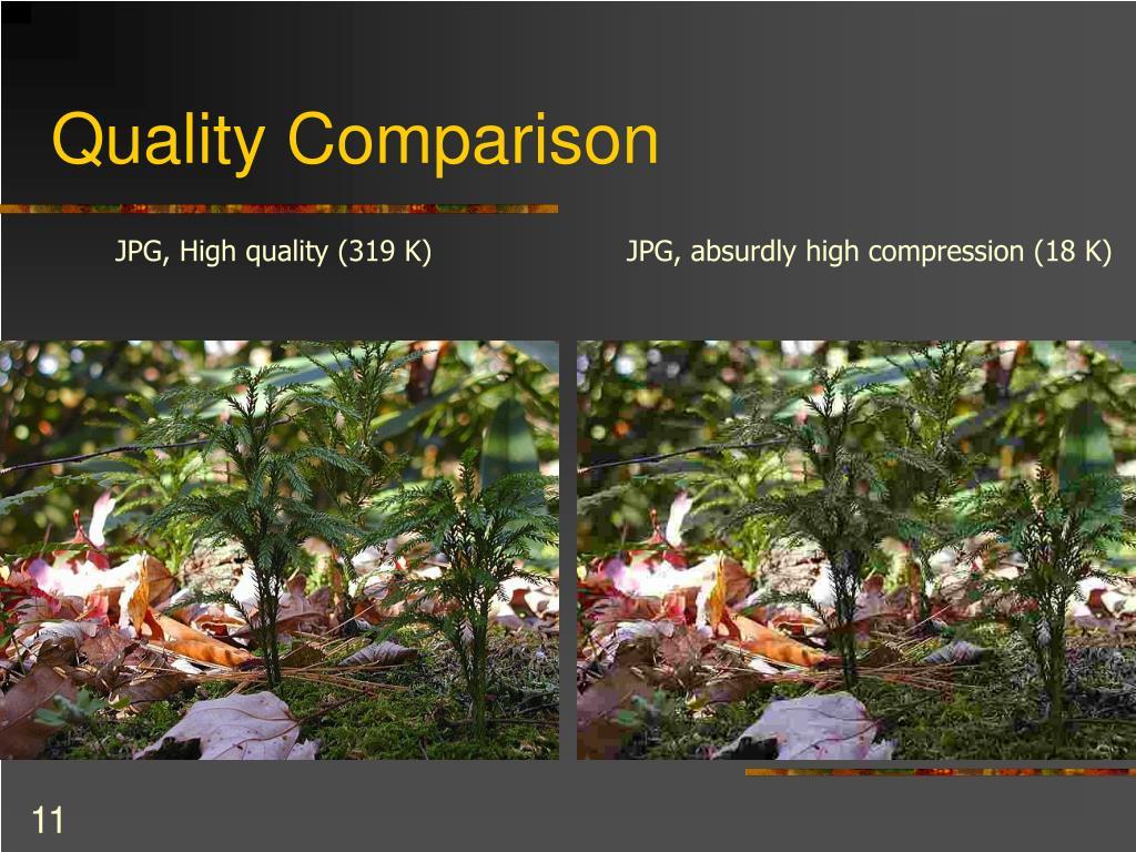 Quality Comparison