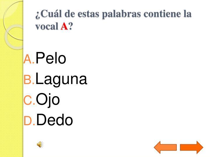 ¿Cuál de estas palabras contiene la vocal