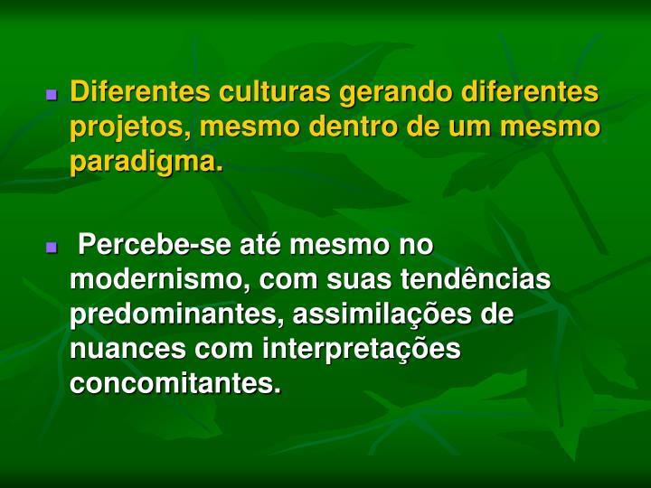 Diferentes culturas gerando diferentes projetos, mesmo dentro de um mesmo paradigma.