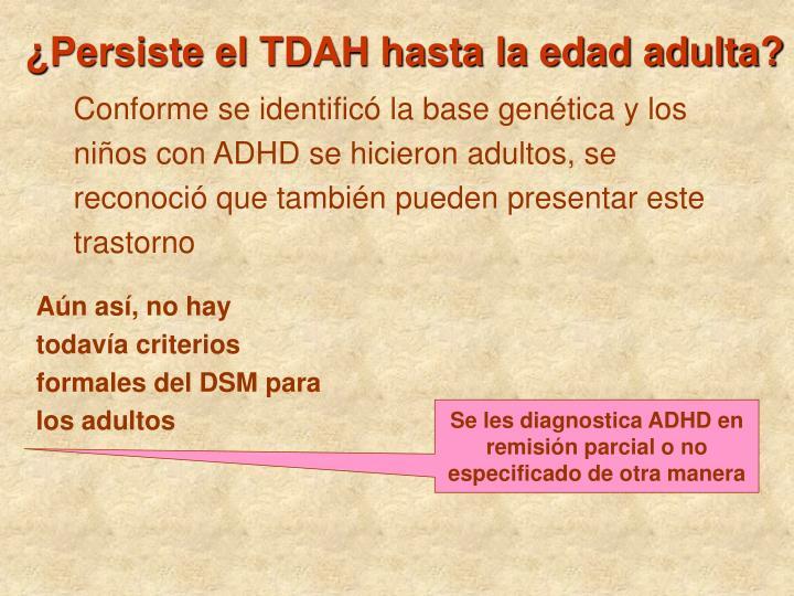 ¿Persiste el TDAH hasta la edad adulta?
