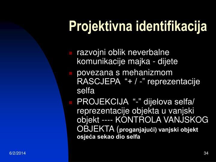 Projektivna identifikacija