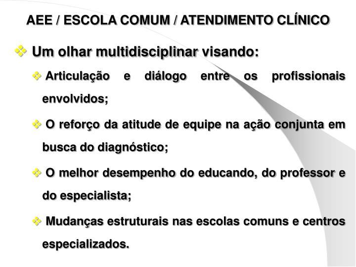 AEE / ESCOLA COMUM / ATENDIMENTO CLÍNICO