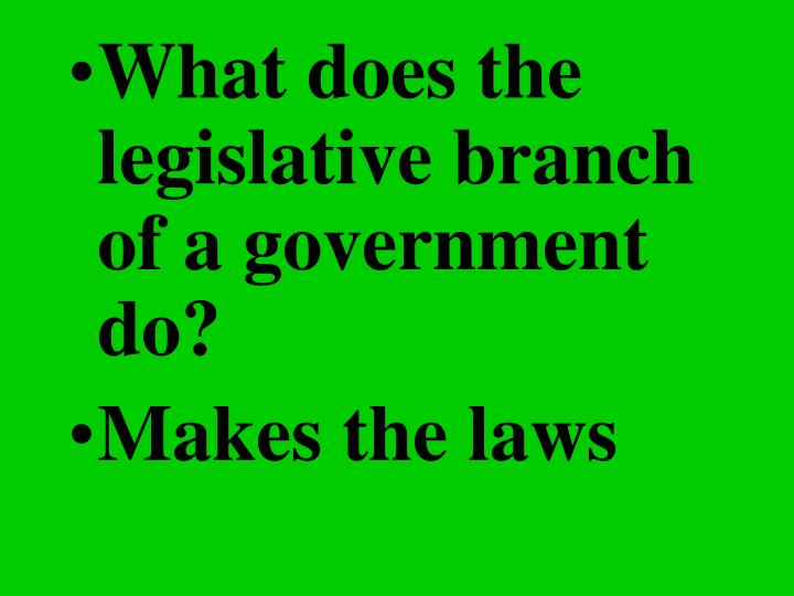 What does the legislative branch of a government do?