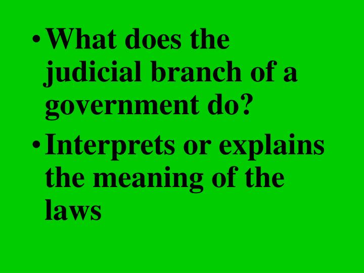What does the judicial branch of a government do?