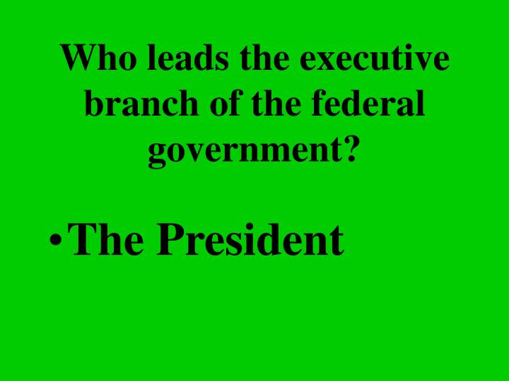 Who leads the executive branch of the federal government?