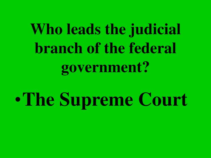 Who leads the judicial branch of the federal government?
