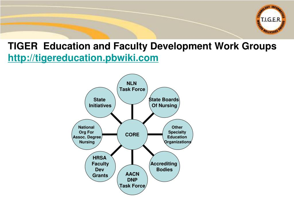 TIGER  Education and Faculty Development Work Groups