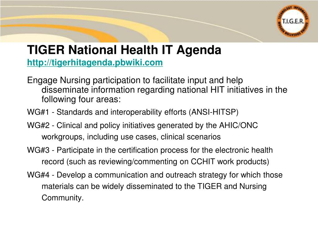 Engage Nursing participation to facilitate input and help disseminate information regarding national HIT initiatives in the following four areas: