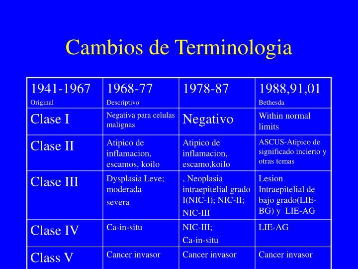 Cambios de Terminologia