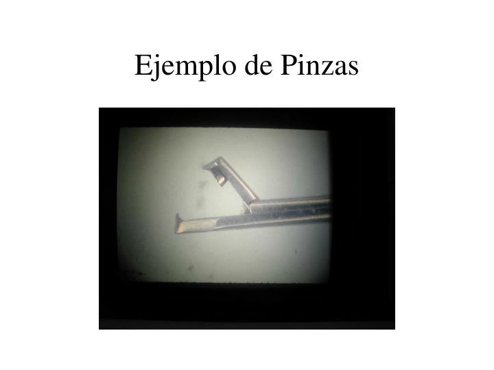 Ejemplo de Pinzas