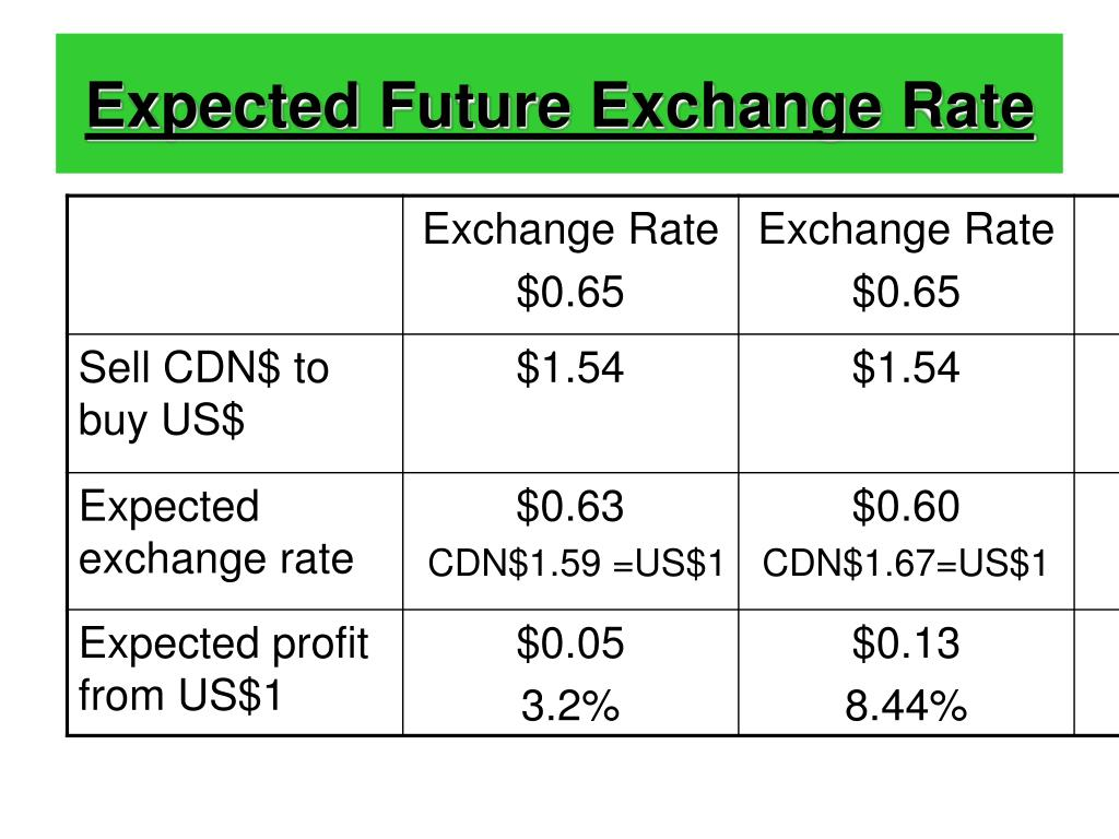 Expected Future Exchange Rate