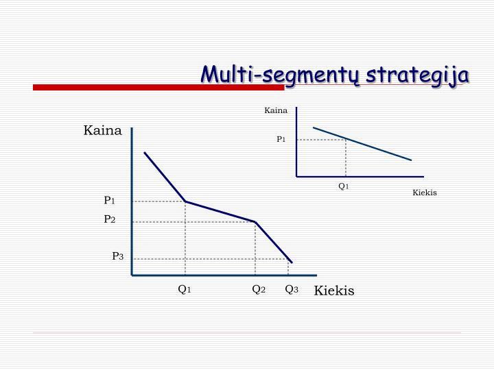 Multi-segmentų strategija