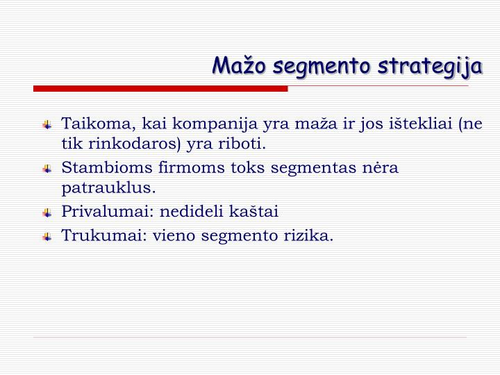 Mažo segmento strategija