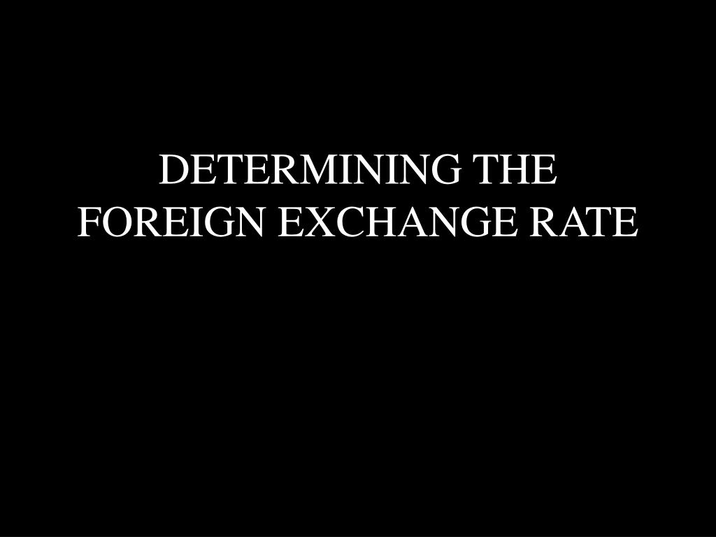 DETERMINING THE FOREIGN EXCHANGE RATE