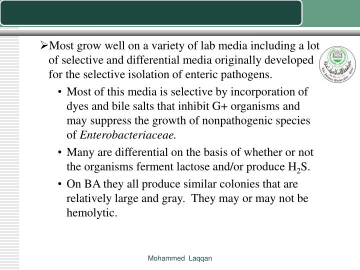 Most grow well on a variety of lab media including a lot of selective and differential media originally developed for the selective isolation of enteric pathogens.