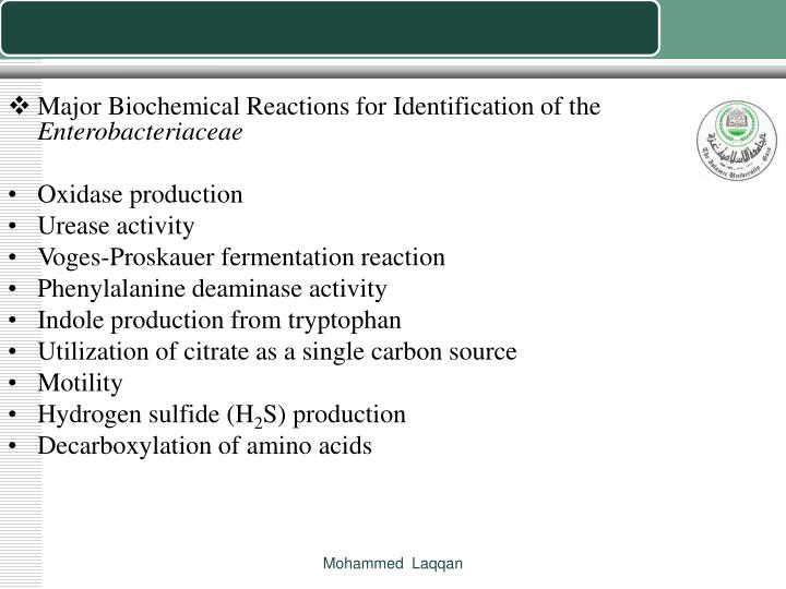 Major Biochemical Reactions for Identification of the