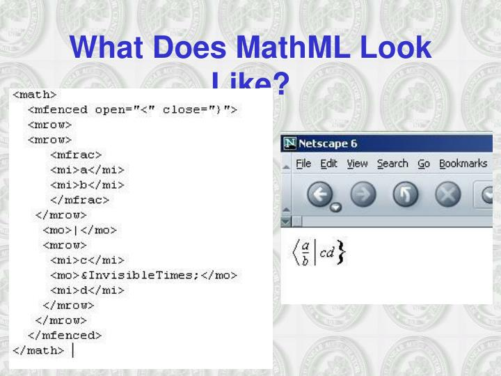 What Does MathML Look Like?
