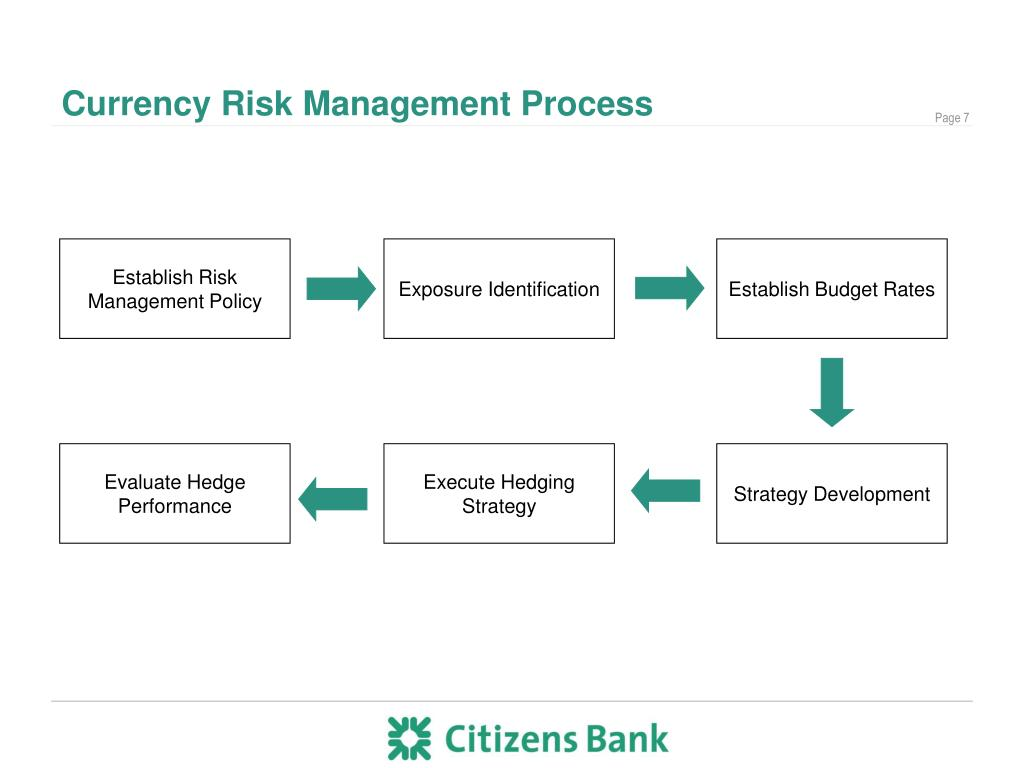 Currency Risk Management Process