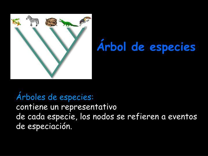 Árbol de especies
