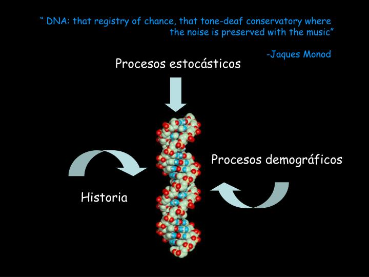 """ DNA: that registry of chance, that tone-deaf conservatory where"