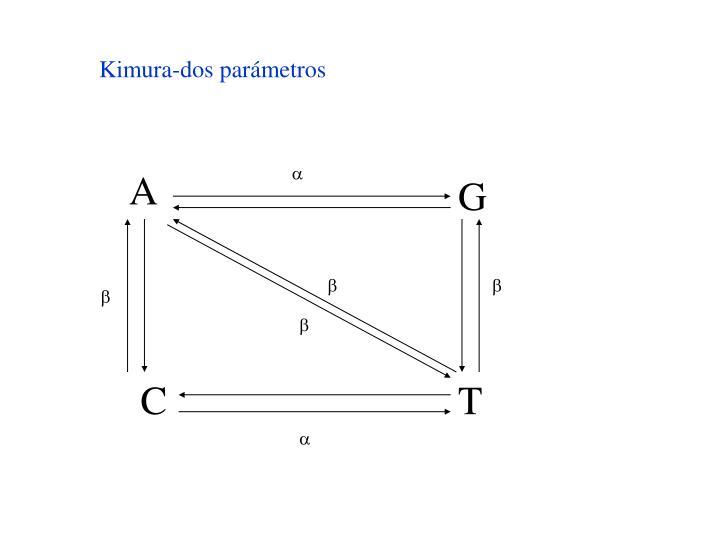 Kimura-dos parámetros