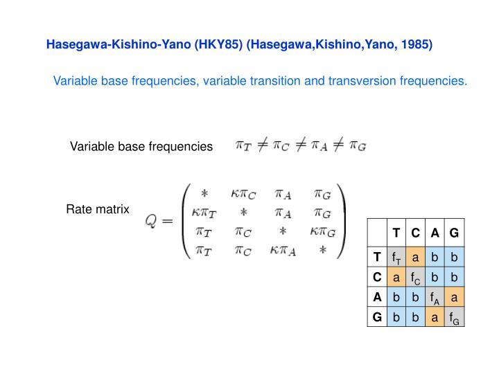 Hasegawa-Kishino-Yano (HKY85) (Hasegawa,Kishino,Yano, 1985)