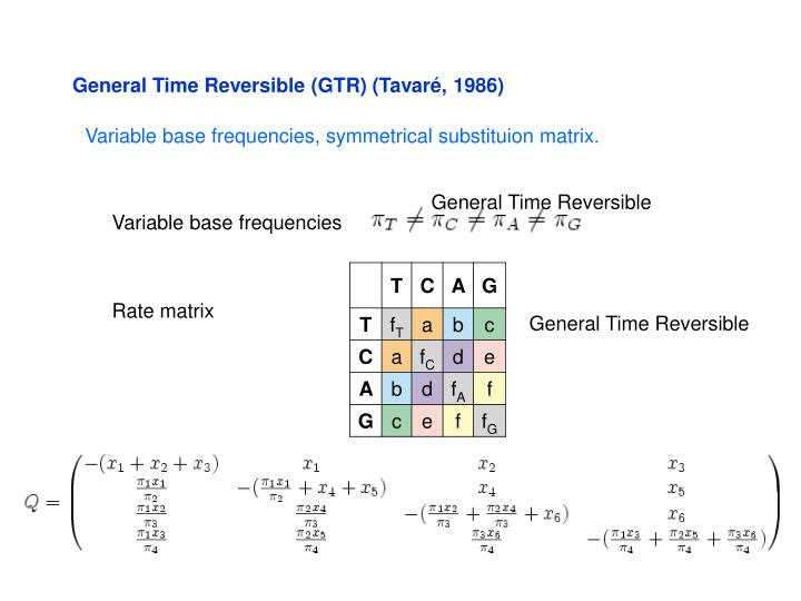 General Time Reversible (GTR) (Tavaré, 1986)