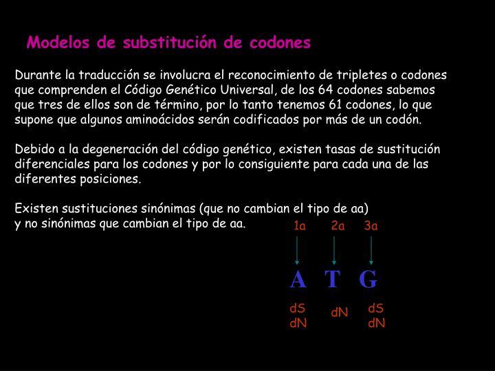 Modelos de substitución de codones