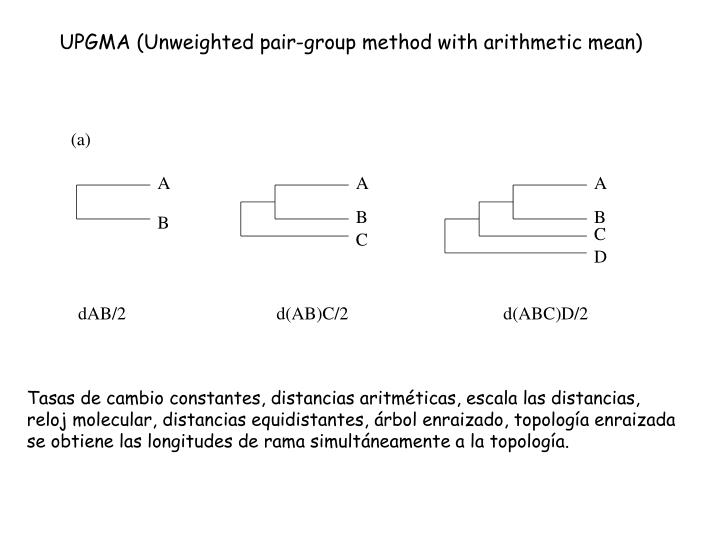 UPGMA (Unweighted pair-group method with arithmetic mean)