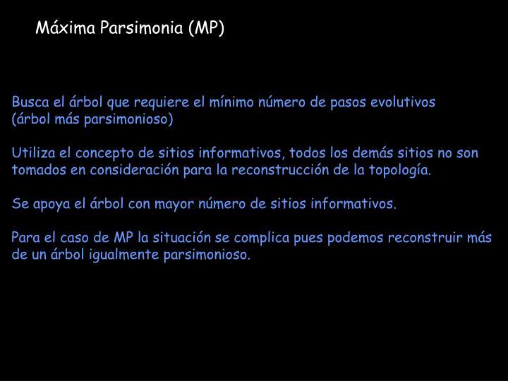 Máxima Parsimonia (MP)